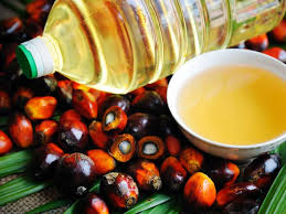 Image result for disease in the heart has been slowed down with the help of palm oil