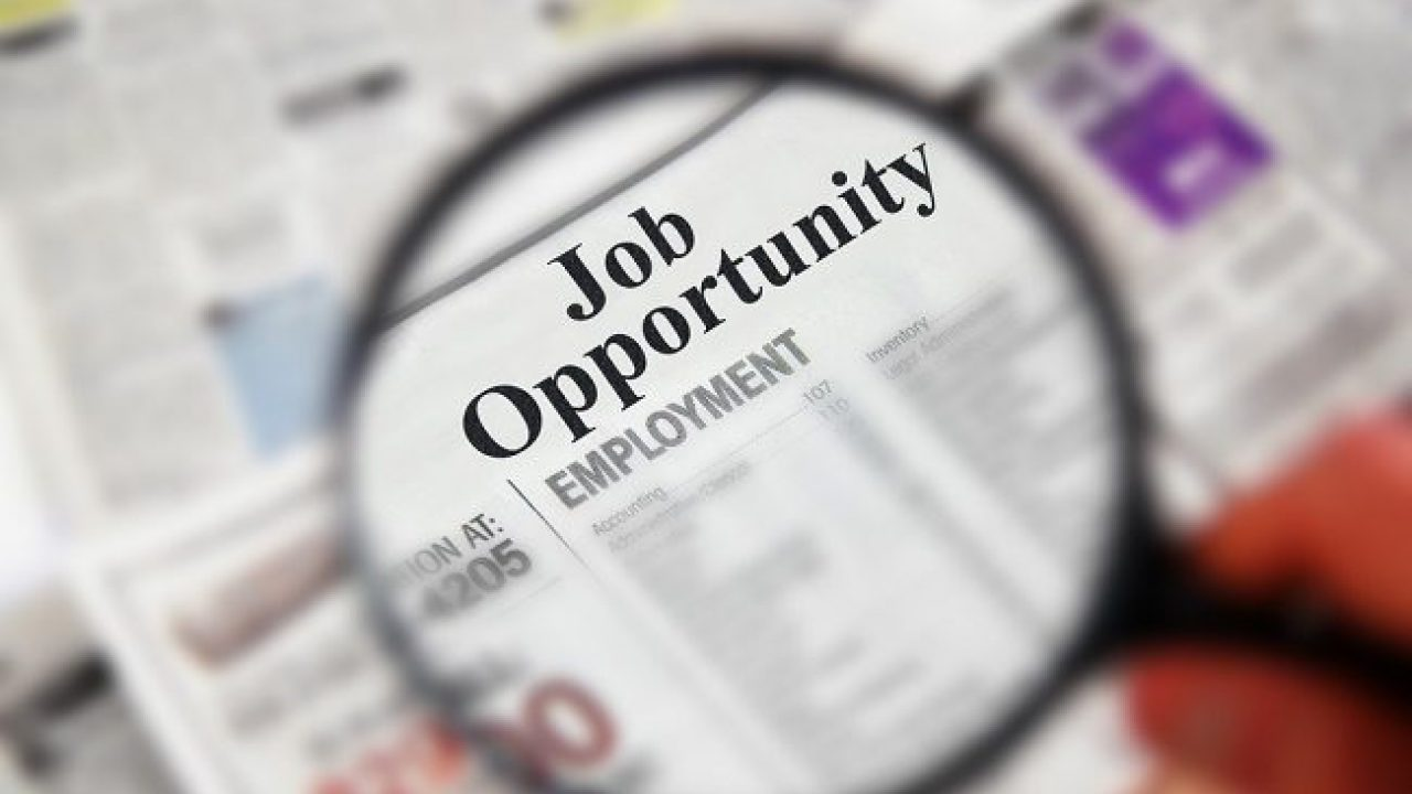 Job Opportunities in The Area