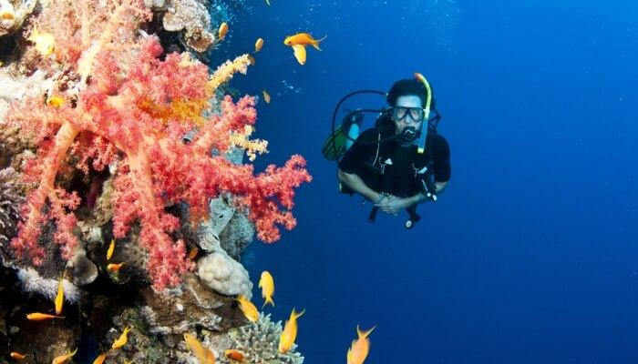 Best Diving Places In Malaysia